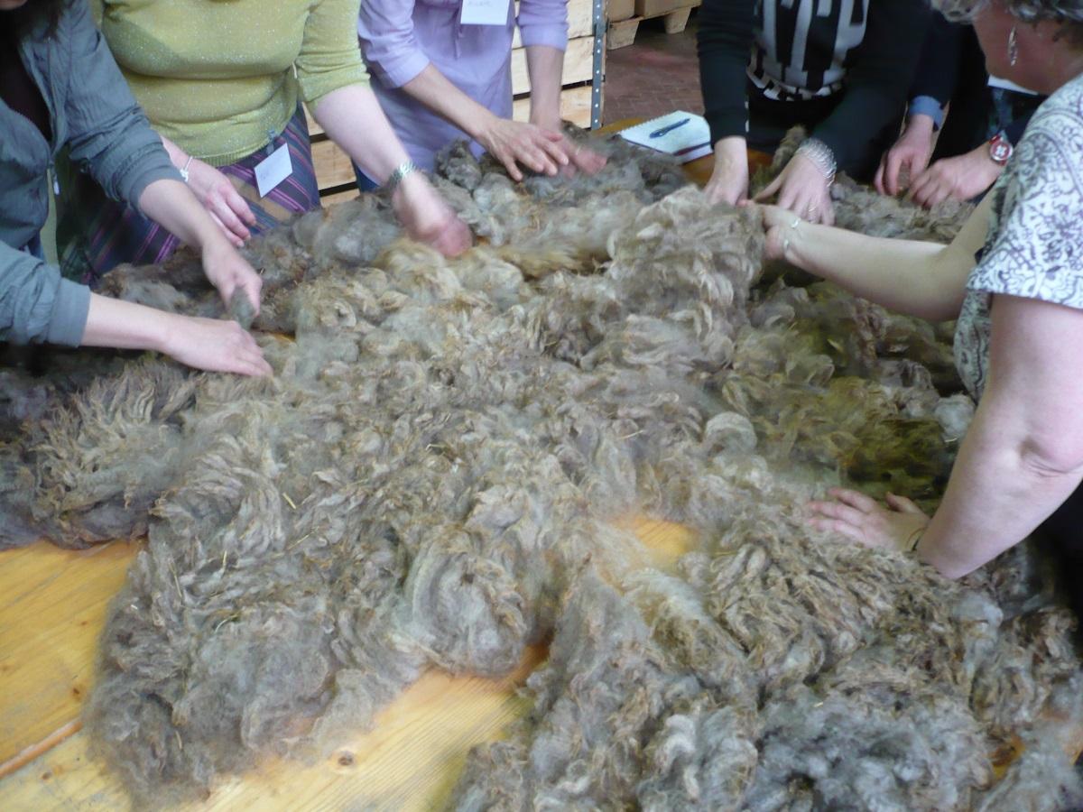 Fibers preparation - Preparazione delle fibre